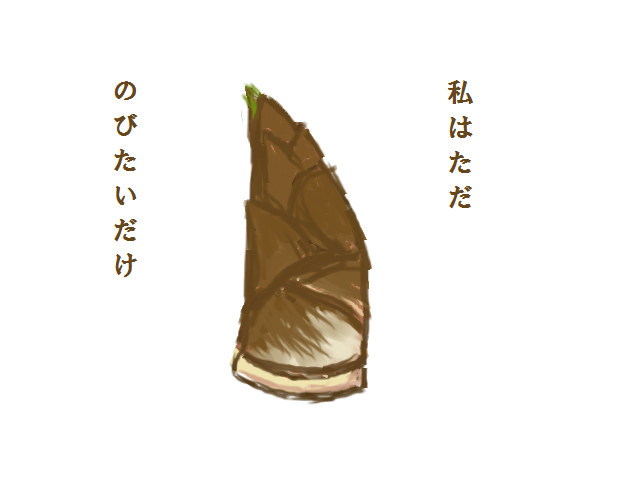 takanoko3